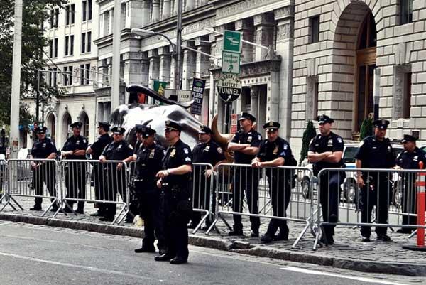NYPD Bull