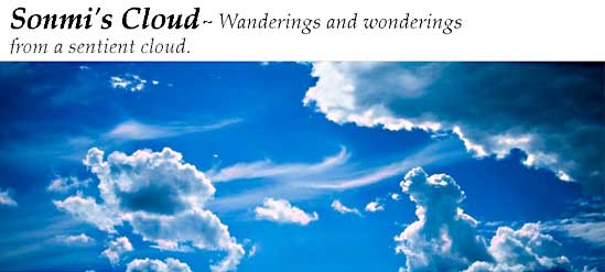 Wanderings and wonderings from a sentient cloud.